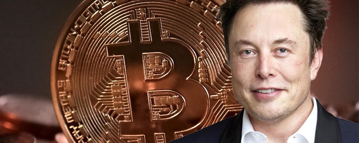 Elon Musk e o mercado de criptomoedas: como o bilionário consegue interferir?